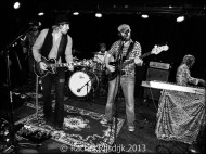 Rosco Levee & The Southern Slide (8)